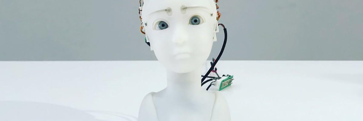 사람의 감정 표현하다! 인간형 로봇 'SEER'